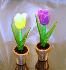 Sugar made Tulips