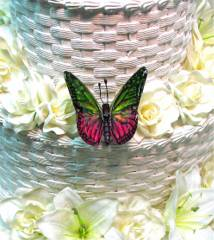 Green & Pink Butterfly for Wedding Cake
