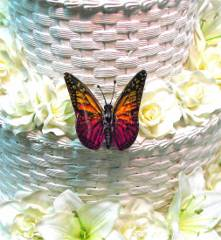 Orange & Purple Butterfly for Wedding Cake